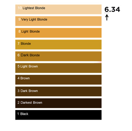 loreal colours chart: Hair colour numbering system l or al professionnel
