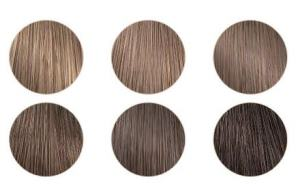 Bronde colour swatches